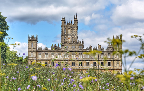 Highclere Castle with wildflowers in foreground